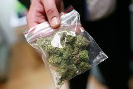 Поймали торговцев марихуаны aliexpress семена марихуаны