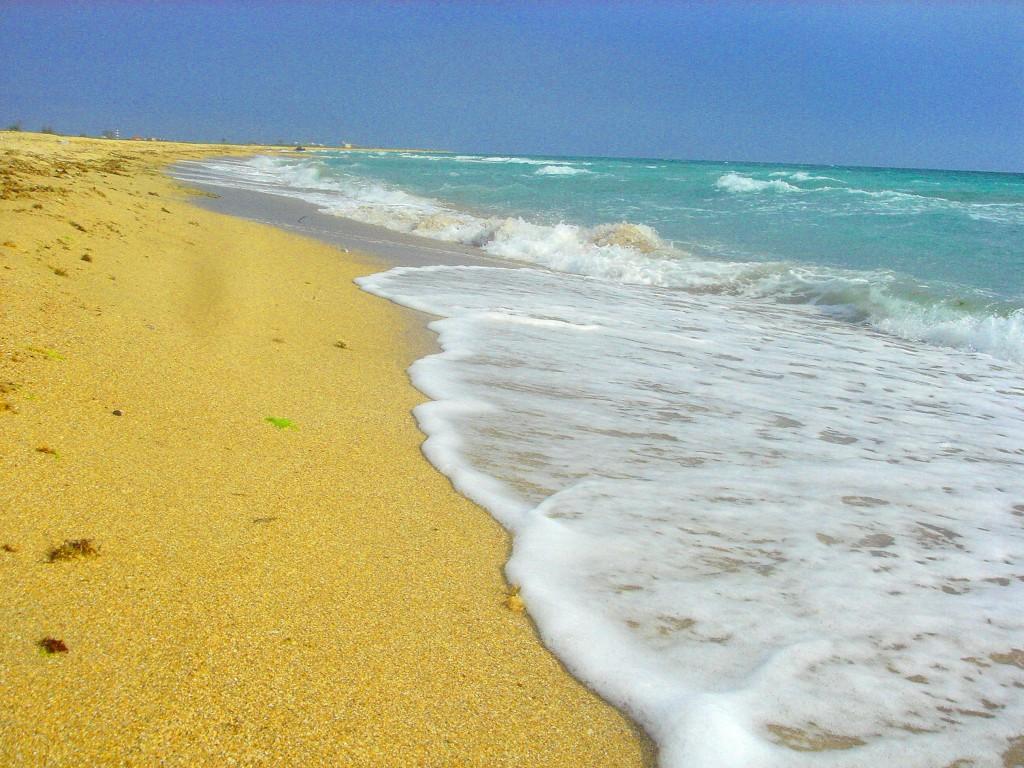 Купить землю в крыму на берегу моря алушта