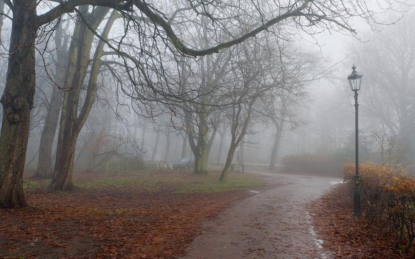 Картинки по запросу осень дождь туман